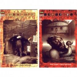 The Dreaming: El chico perdido (2 vols.) - Peter Hogan y Steve Parkhouse