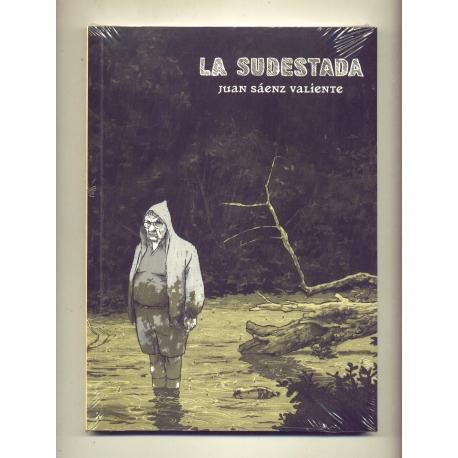 La sudestada - Juan Sáenz Valiente